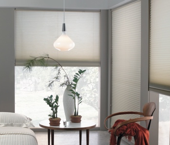 roller shades in Salt Lake City house